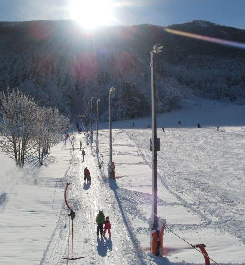 Ski_bor_mainphoto_001